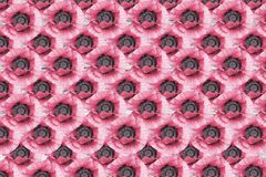 Różowych maczków siatki abstrakcjonistyczny kwiecisty wzór Fotografia Stock