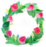 róża wianek ilustracji