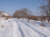 Śródpolna droga w zimie Zdjęcie Stock