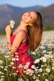 śródpolna rumianek dziewczyna Obrazy Royalty Free