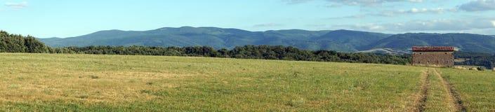 śródpolna zielona panorama Obrazy Stock