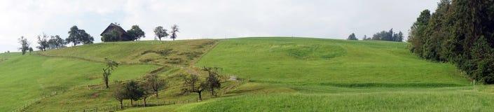 śródpolna zielona panorama Zdjęcie Royalty Free
