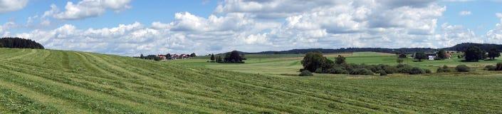 śródpolna zielona panorama Fotografia Royalty Free