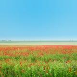śródpolny czerwony niebo Obraz Royalty Free
