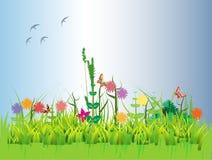 śródpolny kwiecisty Fotografia Stock