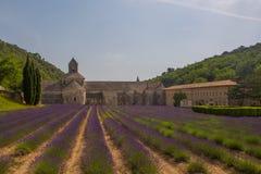 śródpolny lawendowy Provence Fotografia Royalty Free
