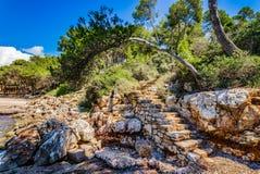 Śródziemnomorska natury sceneria Obrazy Stock