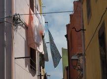 Śródziemnomorska pralnia w wiosna popióle Zdjęcia Royalty Free