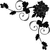 róg ornament dekoracyjny Obrazy Royalty Free