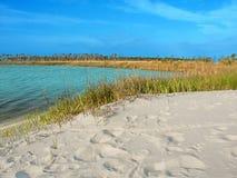 Róg wyspy laguna Mississippi zdjęcie stock