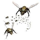 rój pszczół ilustracji