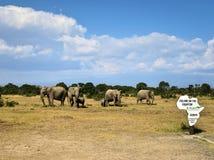 Równik w Kenja Zdjęcia Royalty Free