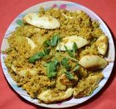 Równina gotowani ryż Obrazy Royalty Free