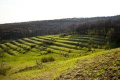 Równina krajobraz Obraz Royalty Free
