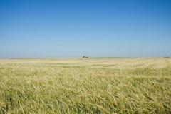 Równina w Hiszpania Fotografia Royalty Free