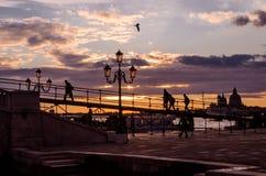 równo Bulwar w Wenecja Latarnie uliczne Fotografia Royalty Free
