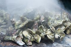 Rôti d'huître photos libres de droits