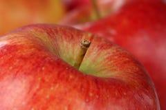 Röd äpplefrukt för makro arkivbild