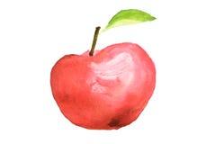 Röd äpplefrukt, vattenfärgillustratör Royaltyfri Bild