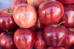 Röd äpplegrupp i detalj från en marknad Royaltyfria Bilder