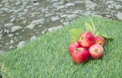 Röd äpplelögn på det gröna gräset arkivfoto
