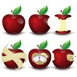Röd äpplesamling Arkivbilder