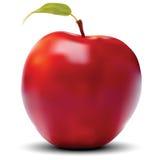 Röd Apple vektor Royaltyfri Illustrationer