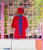 Röd avläggande av examenklänning Royaltyfri Foto