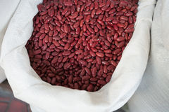 Röd böna Arkivbilder