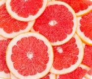 Röd bakgrund av grapefruktskivor Royaltyfria Bilder