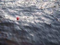 Röd baloon som svävar på vattnet Arkivbild