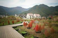 Röd Bassiascoparia och Fuji berg Royaltyfri Foto