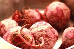 Röd beta som lagas mat i vatten closeup Arkivbild