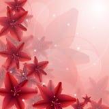 Röd blomma Royaltyfria Bilder