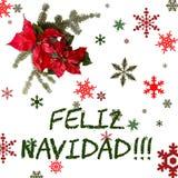 Röd blomma för julstjärna med granträdet och snö på vit bakgrund Hälsningsjulkort vykort christmastime Rött vitt och stock illustrationer