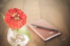 Röd blomma i vas på skrivbordet Arkivbild
