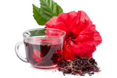 Röd blomma och hibiskus hoad tea Arkivbild
