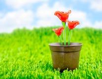 Röd blomma som göras av exponeringsglas i brun blomkruka på grönt gräs med Royaltyfri Foto