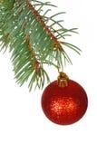 Röd boll på filialen av julgranen Arkivbilder