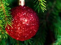 Röd boll på granen, del av julgranen med julpynt royaltyfri bild