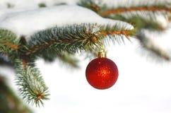 Röd boll på julgranen Arkivbilder