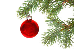 Röd boll på julgranen Arkivbild