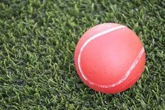 Röd boll som ligger på grönt gräs Arkivfoto