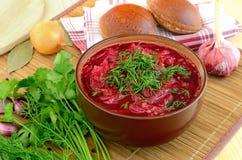 Röd borscht med dill royaltyfria bilder