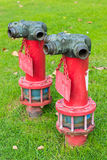 Röd brandmanslangvattenpost Fotografering för Bildbyråer