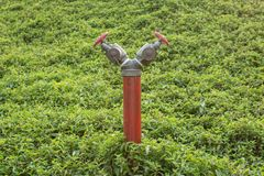 Röd brandpost Royaltyfria Foton