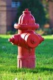 Röd brandpost Royaltyfri Bild