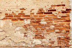 Röd brickwall Royaltyfri Fotografi