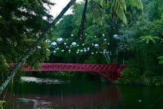 Röd bro över sjön fotografering för bildbyråer