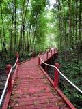 Röd bro i Kuala Sepetang Royaltyfri Bild